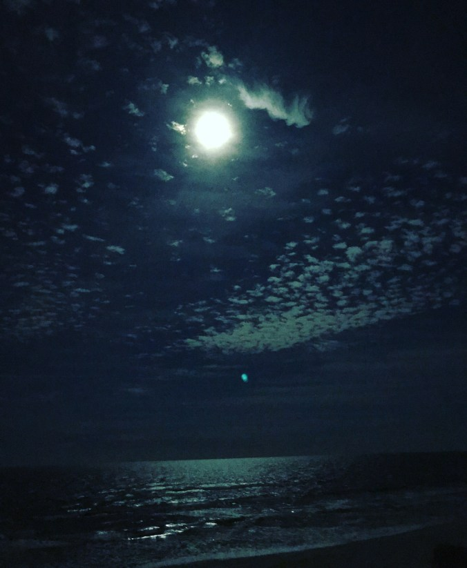 the moon shines over the ocean
