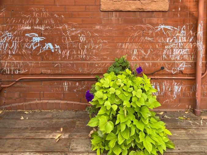 a child's art marks on a brick wall