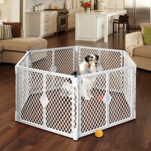 Exercise Pens for Dogs