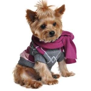 Hoodies and Sweaters for Dogs