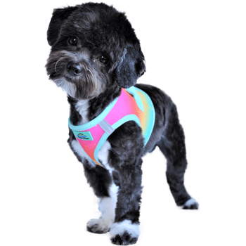 Choke Free Dog Harnesses