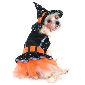 Witch Costume for Dogs