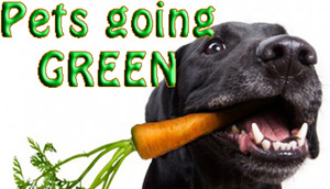 ECO PETS – GO PET GREEN!