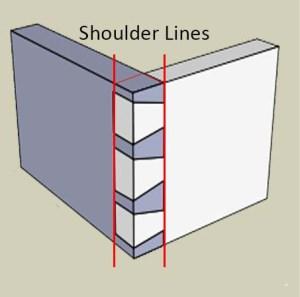 Shoulder Lines