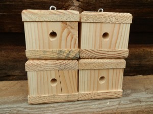 how to get rid of wood bees