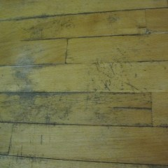 7 Ways To Remove Black Mold On Wood