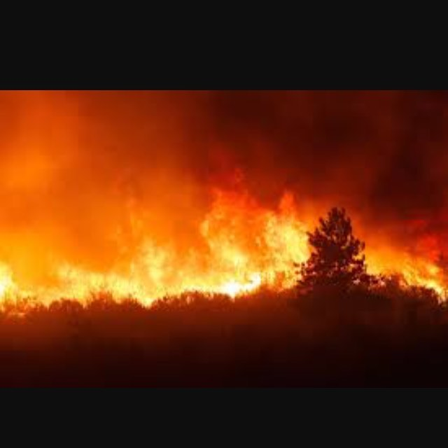 PLEASE pray for those in the Smoky Mountains of Tennessee, where many have been…