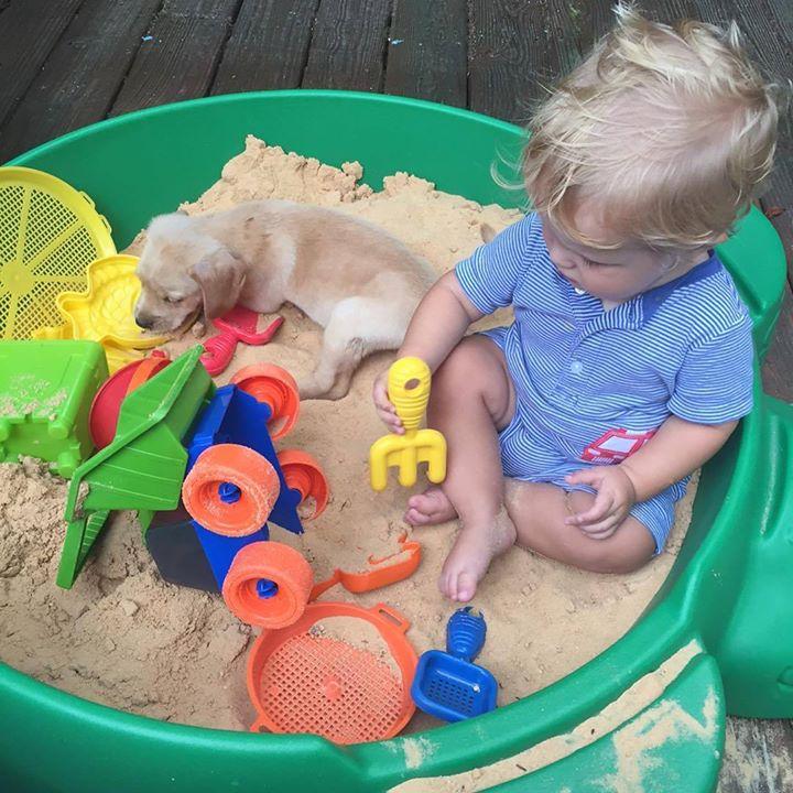 Sandbox buddies! #CarsonPaine #PuppyLove #BringingUpBates