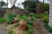 The Bath Priory open garden - 12