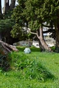 The Bath Priory open garden - 20