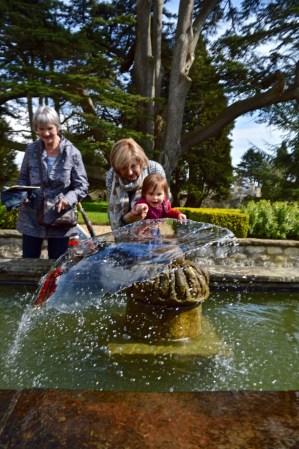 The Bath Priory open garden - 8