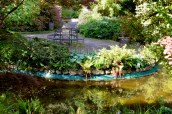 gardens - 78