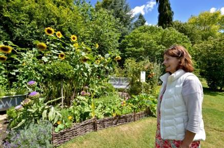 wi garden 20 july 2017 - 4