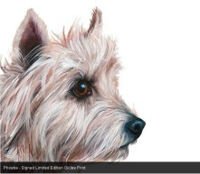 Phoebe - Signed Limited Edition Giclee Print by Georgina McMaster available at www.bayattic.com