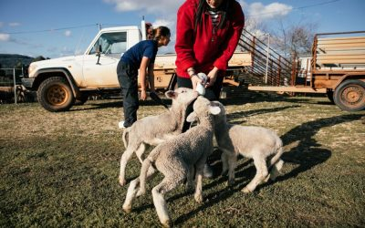 Farmers leading the change: regenerating soil and soul