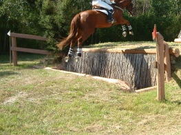 Rider on brown horse jumping a ha-ha