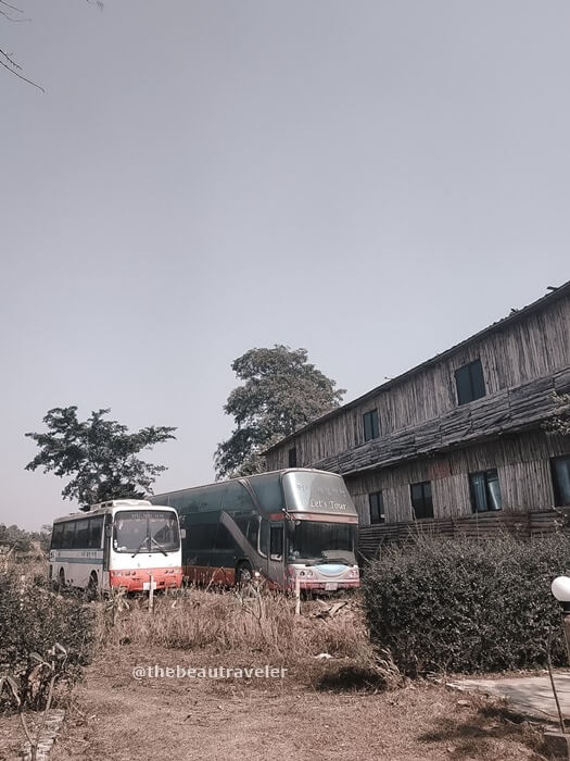 Some Korean buses around the farm.