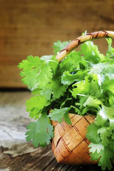 Coriander: My skin's new BFF (you may know it as cilantro!)