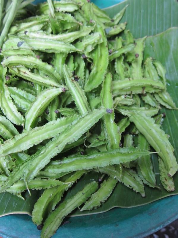 Haricots ailés ou pois carrés (tao-plu)