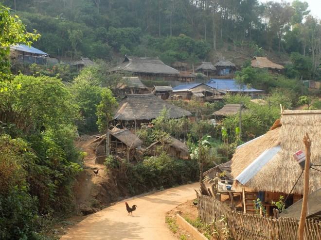 Le village de Ban Loyo (tribu Akha) est composé presque exclusivement de maisons traditionnelles en bambous et autres végétaux.