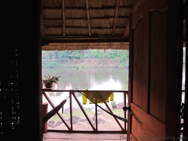 view on the river from the bungalow