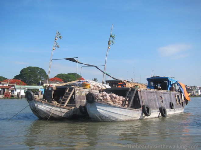 Boat selling turnips, Cai Be