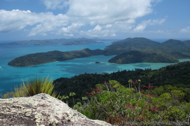 The Whitsunday Islands from Whitsunday Peak