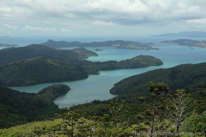 View from Whitsunday Peak