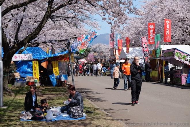 Hanami au parc Gappo, Aomori, Japon