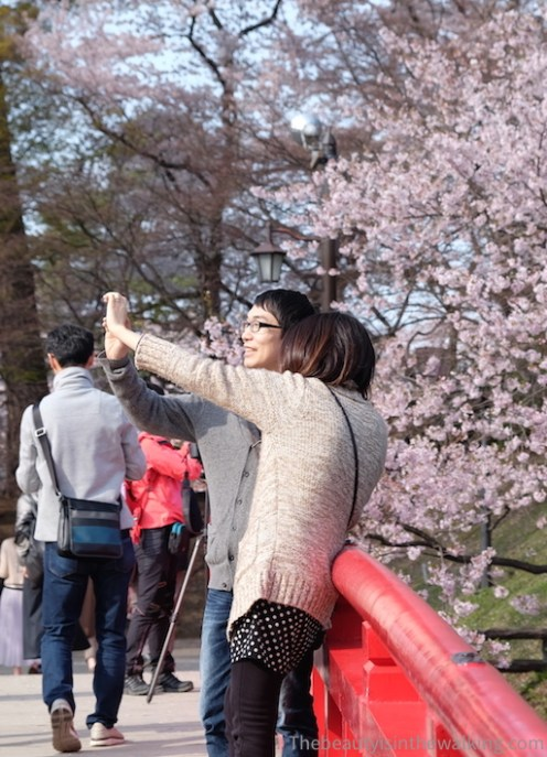 Selfie in the parc of Hirosaki Castle