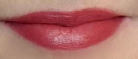 Burt's Bees New Lipsticks