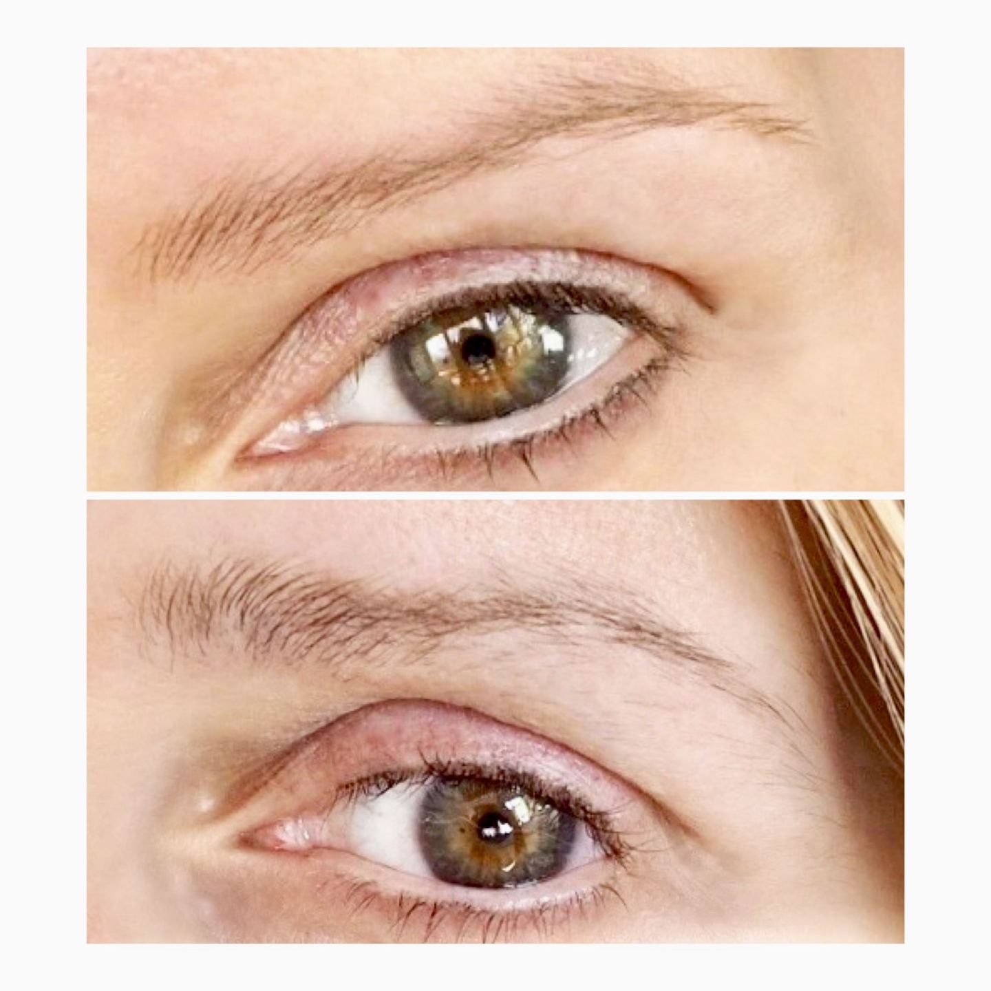 Before and after using Rapidbrow. Destination beauty