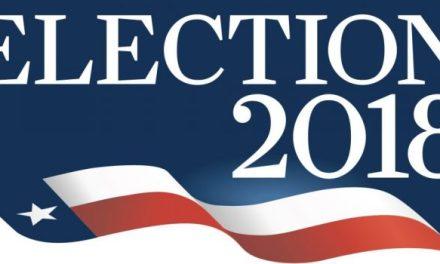 Brady Leads Mayoral Race; D'Amico, Wegmann Top Two For City Council