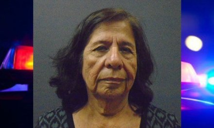 Mother Allegedly Sets Fire To Daughters Home, Killing Two Dogs