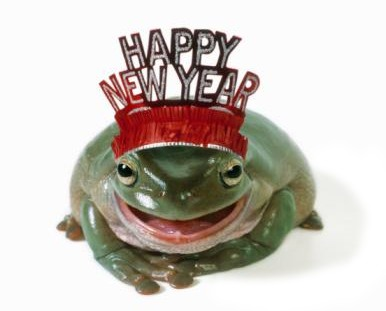 Frog_new_year_2