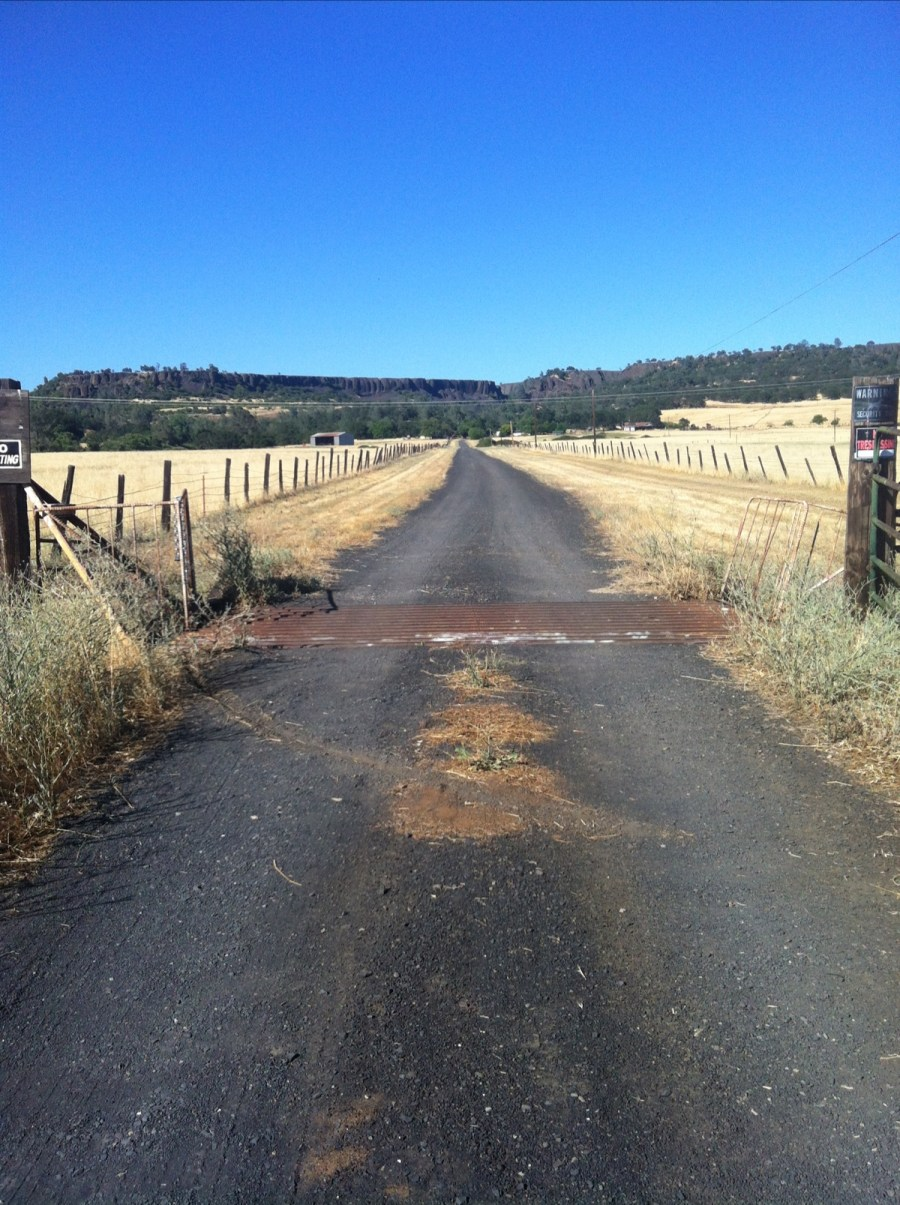 This is the cattle guard at the end of our driveway.