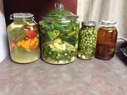 I got into fermenting kinda hardcore this summer.