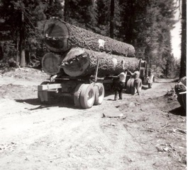 A three-log load of white fir. Homer Lake Timber Sale c. 1967.