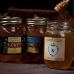 Alberta Honey - 500 ml