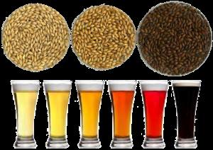 couleur-malt-biere