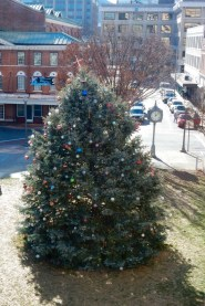 Roanoke Christmas Tree