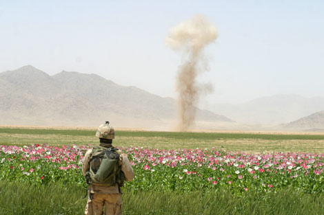 afghanistan_soldier-poppy-field