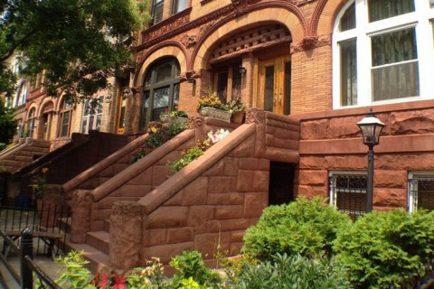 Neighborhood Report: Bed Stuy