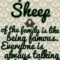 That Post on being the Black Sheep in the Family