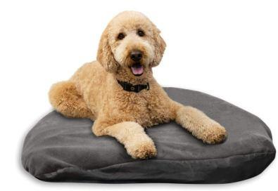 Dog Air Mattresses