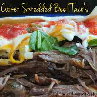 Slow Cooker Shredded Beef Taco's