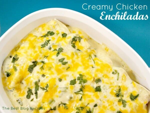 Creamy Chicken Enchiladas | The Best Blog Recipes Casserole Recipe Round Up