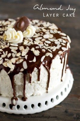 Turn a much-loved candy bar into a cake! This Almond Joy Layer Cake is a divine dessert that everyone will love! | Featured on The Best Blog Recipes
