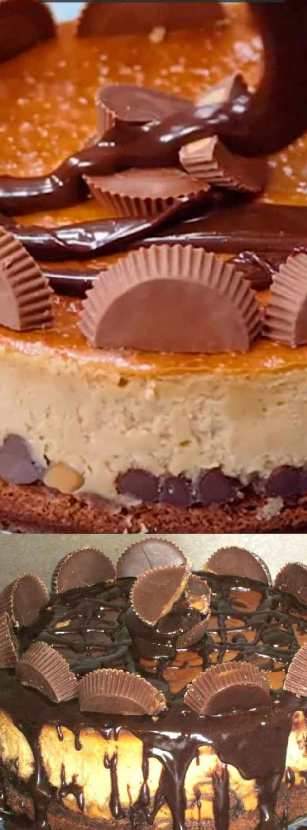 Brownie Bottom Peanut Butter Cheesecake longpin