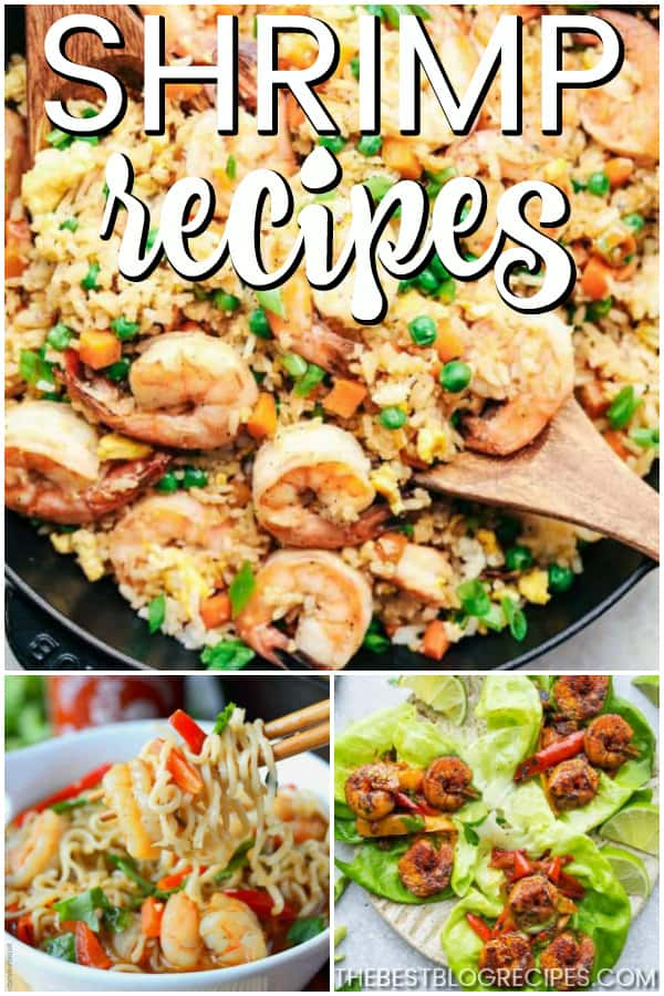 The Best Shrimp Recipes are exactly what is missing from your dinner rotation! These recipes are delicious and have that perfect seafood flavor that you will love.